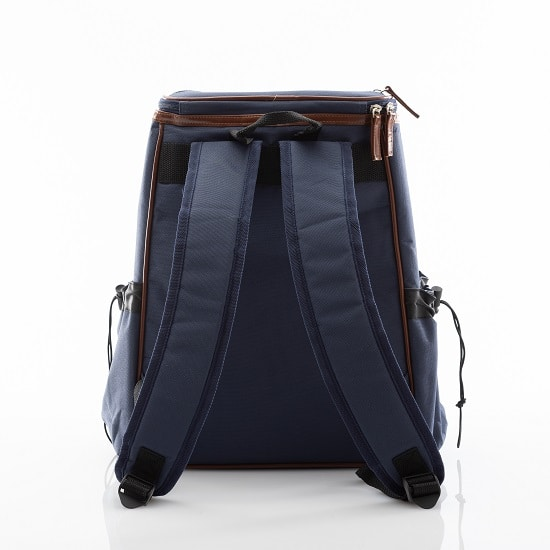 Reverse side of the blue backpack cooler that shows the arm straps.
