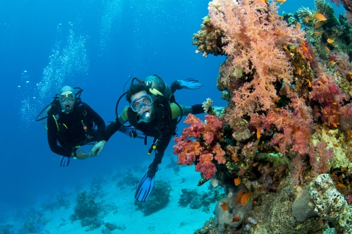honeymoon-scuba-diving